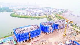 Cất nóc vượt tiến độ dự án Aqua City Hạ Long