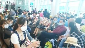 Lượng khách các đường bay nội địa đã tăng trở lại trong thời gian gần đây