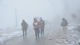 Từ 15-12, Bắc bộ và Bắc Trung bộ chịu rét đậm, rét hại