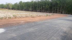 Bình Phước thu hồi 76 dự án chậm tiến độ