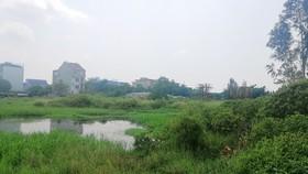"""Đấu giá khu """"đất vàng"""" ở Hà Tĩnh"""