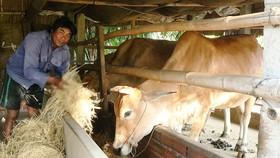 Mang xuân ấm đến đồng bào Khmer