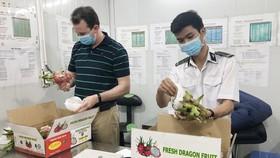 Trái cây Việt được thế giới ưa chuộng