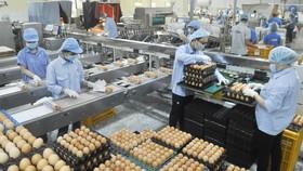 Ngành công thương TPHCM: Nhiều giải pháp hỗ trợ doanh nghiệp
