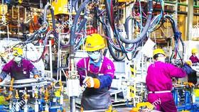 Kinh tế thế giới: Phục hồi cần nỗ lực toàn cầu