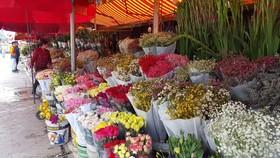 Chợ hoa Đầm Sen hoạt động tạm từ ngày 11-6 đến 13-6