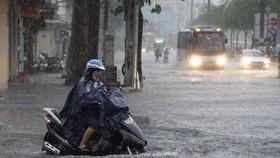 TPHCM gia tăng mưa cực đoan: Cần giải pháp tổng thể giảm thiểu thiệt hại