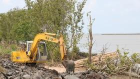 Cà Mau: Khẩn cấp xử lý sạt lở đê biển Tây