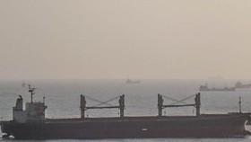 Bà Rịa – Vũng Tàu: 5 thuyền viên tàu nước ngoài dương tính với SARS-CoV-2
