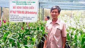 Thu nhập hơn 15 triệu đồng/tháng từ vườn lan Denrobium