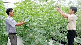386 tỷ đồng cho chương trình khoa học - công nghệ phục vụ nông thôn mới