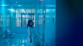 Phạm Quỳnh Anh, Quang Sự bất ngờ trở lại với điện ảnh