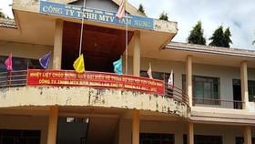 Trụ sở Công ty Nam Nung. Ảnh HỮU LONG