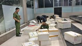 Bắt giữ hơn 600 thùng dâu tây nghi của Trung Quốc nhập lậu vào Đà Lạt qua đường hàng không