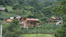 Lâm Đồng chỉ đạo xử lý nghiêm vụ hàng chục căn nhà xây trái phép giữa đất rừng