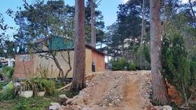 Đà Lạt: Ngang nhiên lấn chiếm đất rừng ngay cửa ngõ thành phố