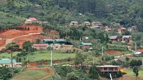 Giải toả nhà trái phép giữa đất rừng gần khu du lịch hồ Tuyền Lâm