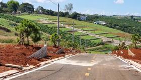 Đình chỉ công tác thêm một cán bộ liên quan tách thửa, quản lý đất đai tại TP Bảo Lộc