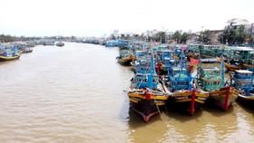 Bão số 12: Nhiều tàu thuyền và lao động còn trong vùng nguy hiểm