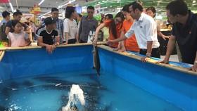 Lần đầu tiên có tuần lễ cá sông Đà ở Hà Nội