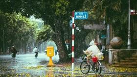Miền Bắc vào Thu, miền Trung mưa như trút