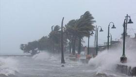 5 ngày nữa có 1 cơn bão nguy hiểm hướng vào nước ta