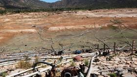 Những cánh đồng đang bắt đầu khô cạn nước ở tỉnh Ninh Thuận. Ảnh: Tổng cục Phòng chống thiên tai