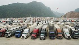 21 doanh nghiệp Việt Nam tìm cơ hội xuất khẩu nông sản sang Vân Nam – Trung Quốc