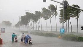 Trong sáng đến trưa nay, bão số 5 với cường độ cấp 7-8 sẽ đi vào các tỉnh từ Quảng Bình đến Quảng Nam