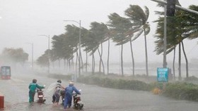Bão số 7 chưa tan, bão số 8 đã hình thành trên Biển Đông