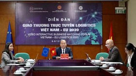 Doanh nghiệp Việt Nam và EU kết nối logistics