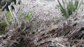 Hà Nội còn 8 độ C, Mẫu Sơn chìm trong băng tuyết