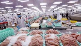 Trung Quốc tạm ngừng nhập hàng đông lạnh của Việt Nam