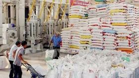 5 tháng đầu năm 2021, xuất khẩu nông sản của Việt Nam tăng 30%