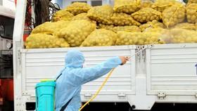 Lập tổ công tác chỉ đạo sản xuất nông sản – thực phẩm tại miền Nam