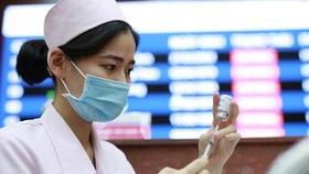 Ấn Độ sẵn sàng phối hợp với Việt Nam sản xuất vaccine điều trị Covid-19