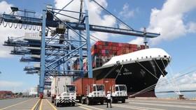Ngăn chặn xuất nhập khẩu có dấu hiệu bất thường