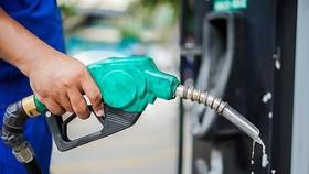 Chiều nay 10-9, giá bán lẻ xăng, dầu tăng nhẹ