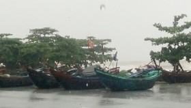 Dự báo mưa lũ lớn từ Nghệ An tới Quảng Nam