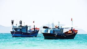 Hàng chục ngàn tàu cá phải nằm bờ, thiếu hụt người đi biển
