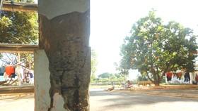 Nhiều trụ bê tông nâng đỡ 4 tầng cầu nối ở Bệnh viện Đa khoa tỉnh Bình Thuận bị nứt toác, trơ sắt hoen rỉ.