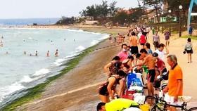 Bãi biển Đồi Dương (TP Phan Thiết)