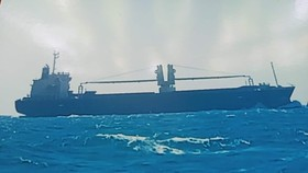 Tàu hàng WHITE TO MONY được ngư dân trên tàu cá gặp nạn chụp lại.
