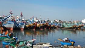 Bình Thuận chấn chỉnh các tàu cá và phương tiện thủy nội địa.