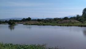 Khu vực sông Đá Hàn, nơi xảy ra vụ đuối nước thương tâm.