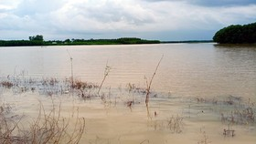 Mưa lũ kéo dài khiến hơn 1.200ha đất sản xuất nông nghiệp bị ngập úng. Ảnh: PCTT BT
