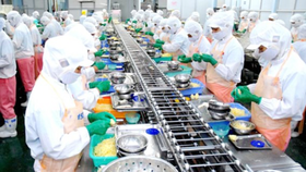 Processing industry draws much attention by foreign investors (Photo: SGGP)