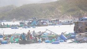Khanh Hoa province suffers VND13.5 trillion damage because of Typhoon Damrey (Photo: SGGP)