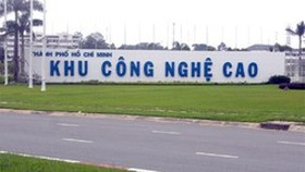 HCMC to rethink policies to attract talented staff