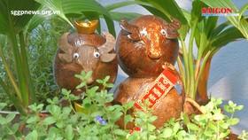 Coconut bonsai – Water buffalo edition